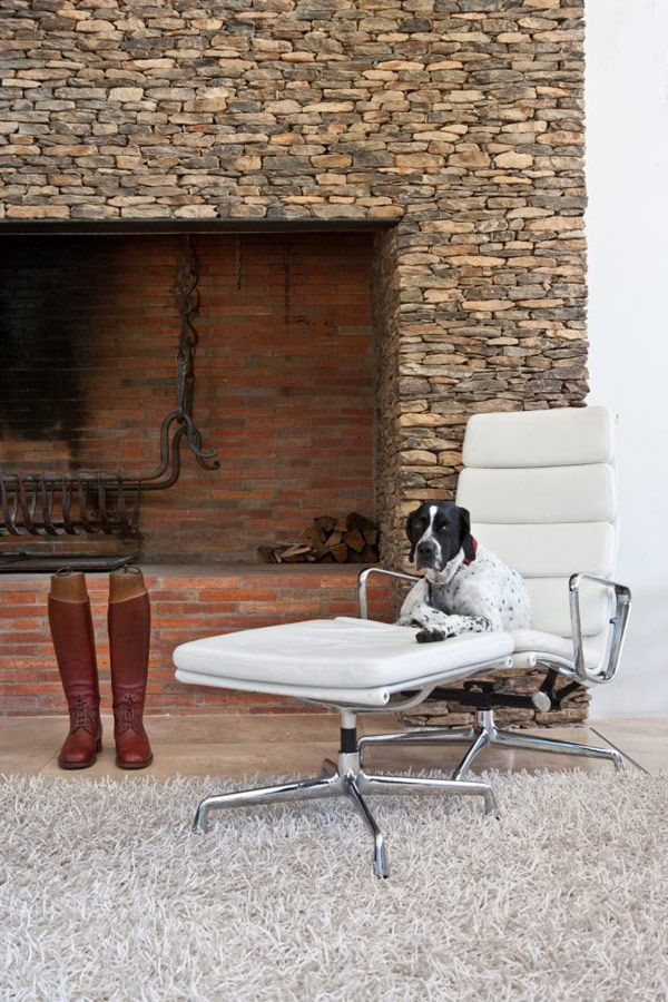 The Swellendam House: Sustainable Contemporary Home In South Africa : Dog  With White Modern Chaise Lounge Rug Fireplace Natural Stone Wall A.