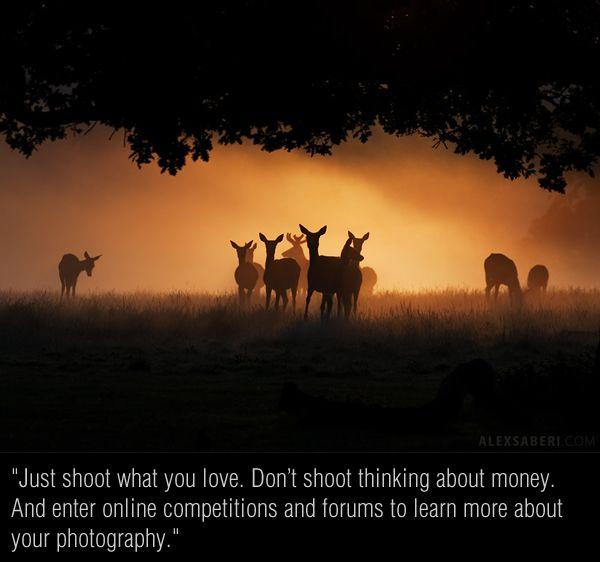 Interview with Nature Photographer Alex Saberi - 121Clicks.com