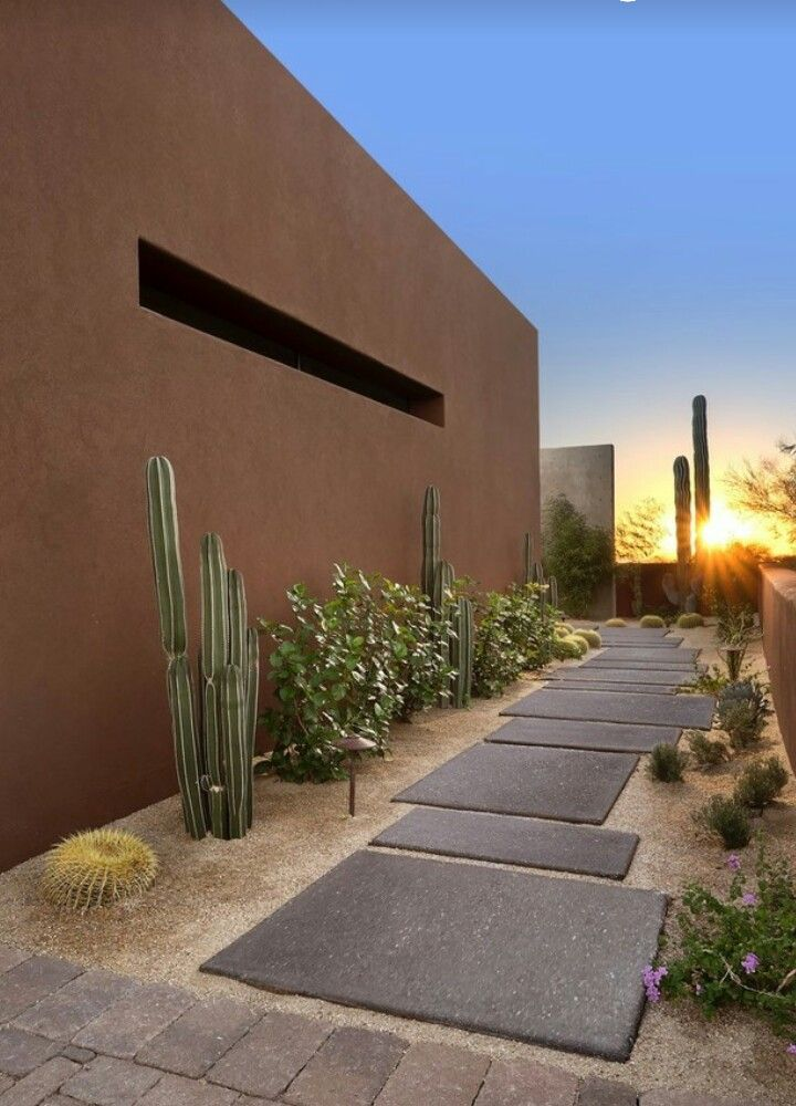 462 best Desert landscaping ideas images on Pinterest