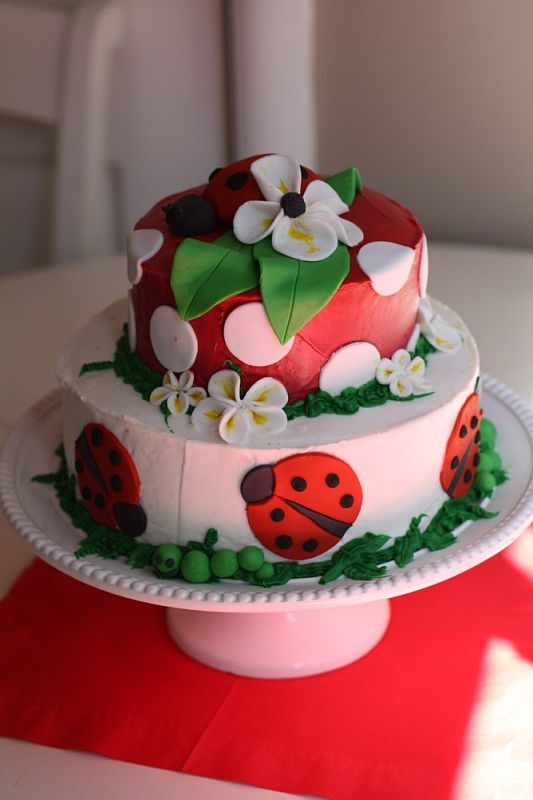 Ladybug birthday cake! I want to do this or the cupcakes for her 2nd birthday.