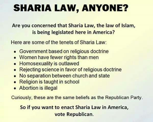 ...and, if you don't want it, DON'T vote republican.  That means that for the sake of abiding with Islam's commandments, such as jihad, a Muslim is obliged to lie and should not have any feelings of guilt or shame  associated with this kind of lying.  THAT'S THE GOP FOR SURE. THEY HAVE NO SHAME!