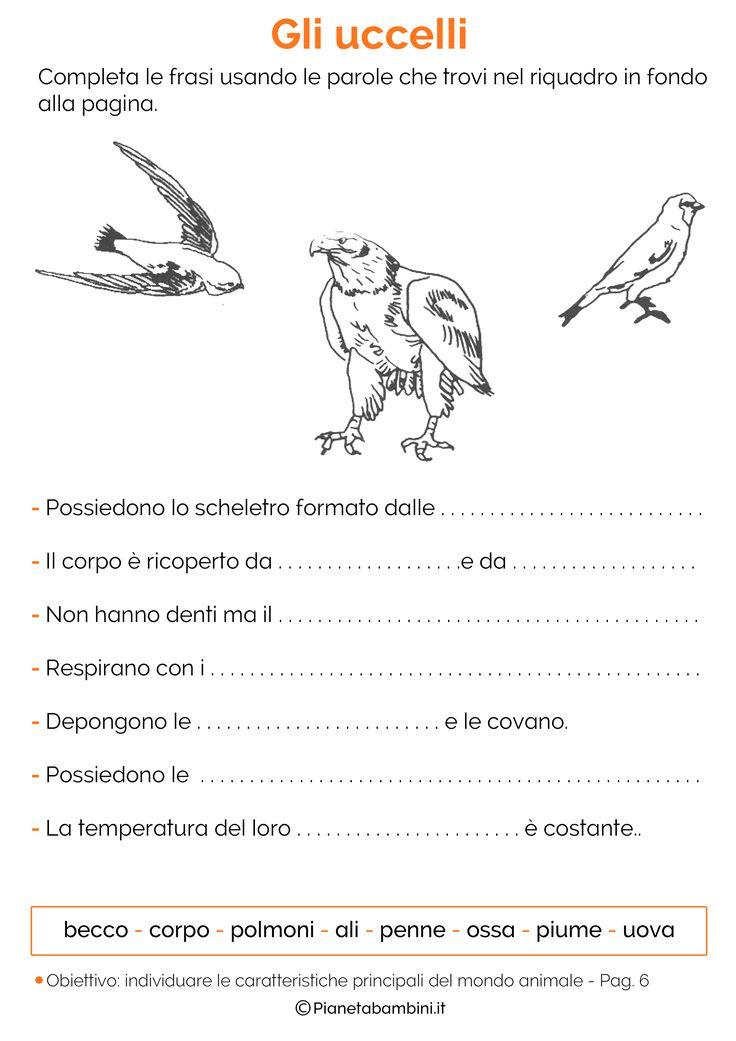 http://pianetabambini.it/wp-content/uploads/2015/05/Schede-Didattiche-Animali-06.png