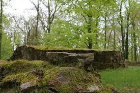 Bildergebnis für ober kainsbach Ruine schnellerts