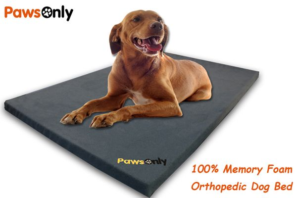 Large Grey Comfort Memory Foam Dog Bed
