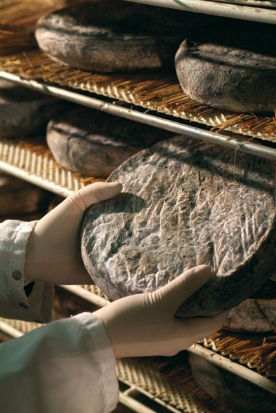 AOP Saint-Nectaire fermier #Fromage #Cheese