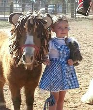 Costumes for Horses for Horse Shows, Halloween or Parades.....well now I need a horse lol ;)