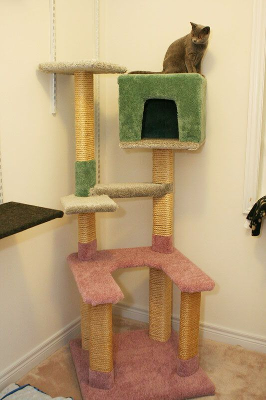 43 best cat condo images on pinterest dog cat pets and for Diy cat furniture