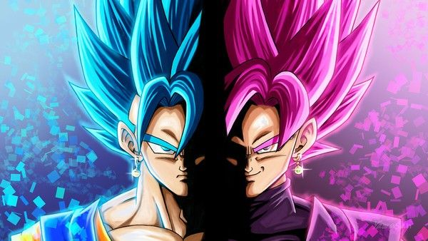 Vegito and Black Goku
