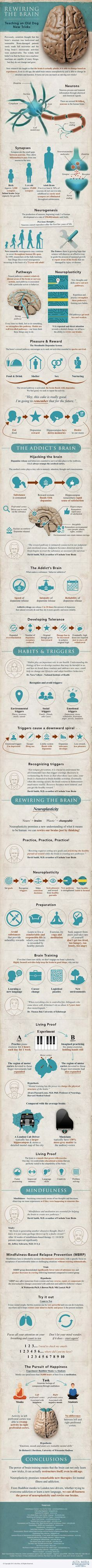 This is a great infographic about how to break bad habits, create good habits, and even control our emotions -- Rewiring The Brain