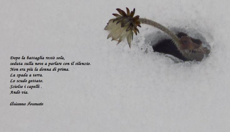 dopo la battaglia resto' sola, seduta sulla neve a parlare con il silenzio.La spada a terra. Lo scudo gettato. Sciolse i capelli. Andò via. Pensieri ,immagini, parole Arianna Formato