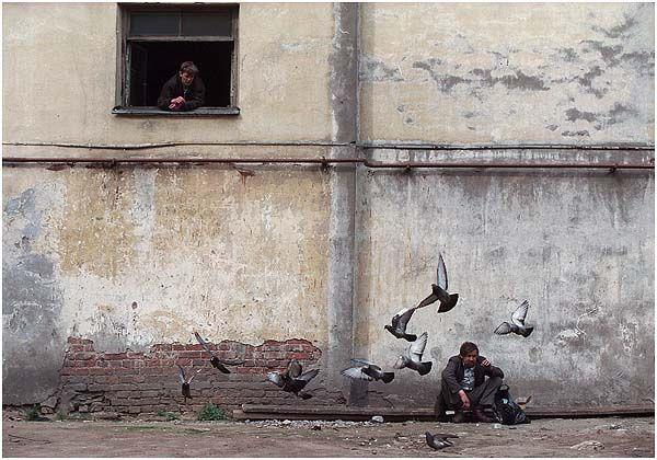 Sergey Maximishin Photography