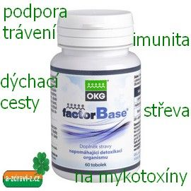 Factor Base - pro zdravé střeva, imunitu
