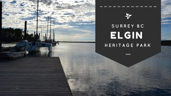 Elgin Heritage Park in Surrey BC - a beautiful long walk with loads of history and great views