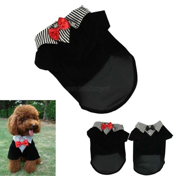 Clothing for dogs Puppy Pet Dog Clothes Cotton Western Style Male Suit & Bow Tie | Pet Supplies, Dog Supplies, Clothing & Shoes | eBay!