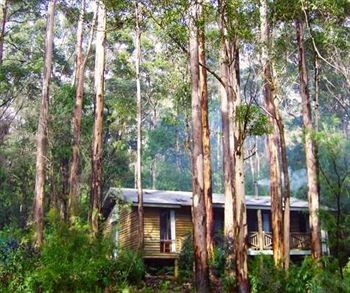 Karri Valley Resort, Pemberton,  Australia