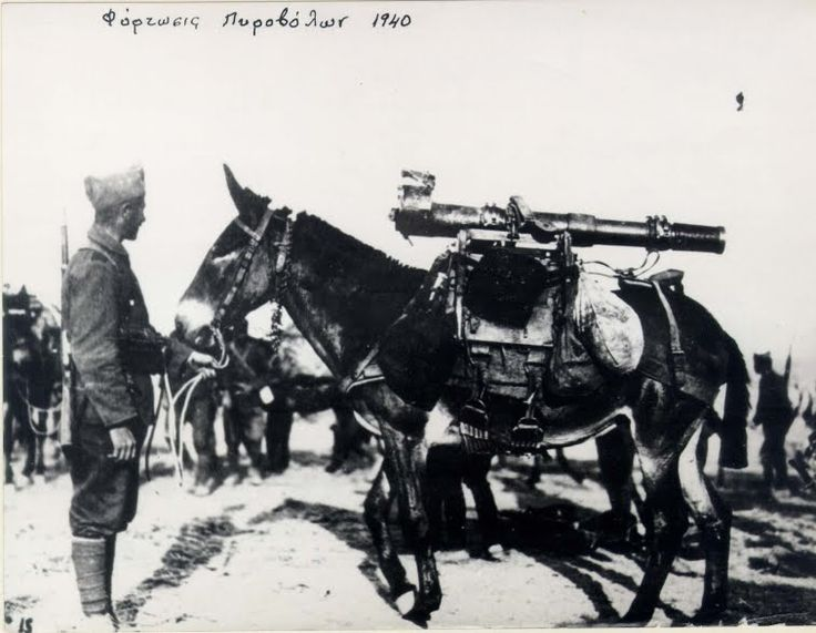 Όταν είδαν τους ιππείς να ορμούν εναντίον τους, κραδαίνοντας τα σπαθιά τους, κατάλαβαν ότι ένας δρόμος υπήρχε μόνο γι' αυτούς, εκείνος της υποχώρησης!  Σύντομα οι οπισθοχωρούντες Γερμανοί τράπηκαν σε άτακτη φυγή προς τη Φλώρινα.
