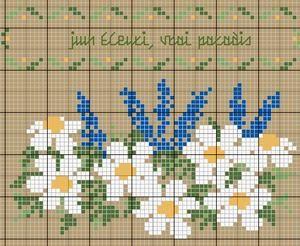 Juin fleuri, vrai paradis... - Les chroniques de Frimousse