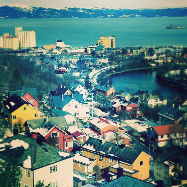 ✱ utsikt over Trondheim  / Steinberget utsiktspunkt