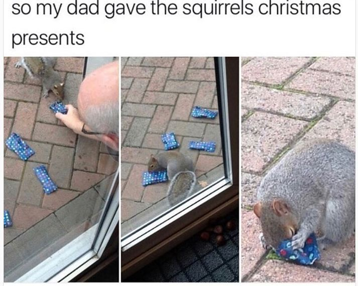 100 Funny Pictures For Today (#88)