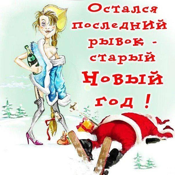 Картинки смешные старый новый год, дню защитника