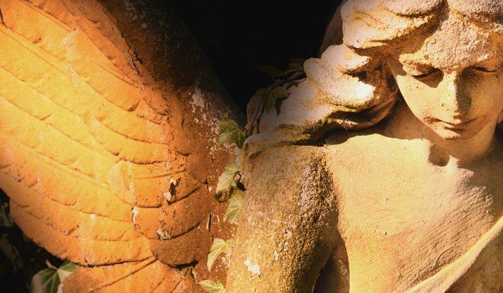 5 знаков от ваших ангелов, которые нельзя игнорировать