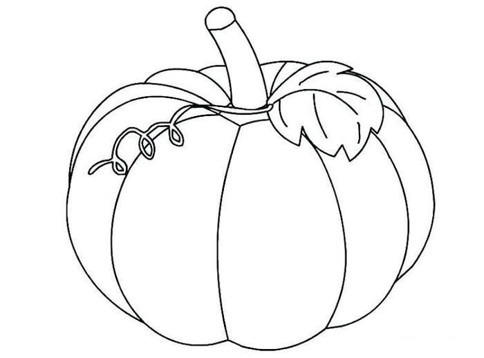 Free Printable Pumpkins Coloring Pages Pumpkin Coloring Pages Fall Coloring Pages Halloween Coloring Pages