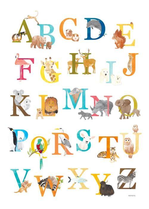 Afgelopen maanden illustreerde ik elke week een of meerdere letters uit het alfabet voor kinderen. Als afsluiting komen nog één keer alle dieren voorbij. 26 letters bij elkaar op een alfabetposter!