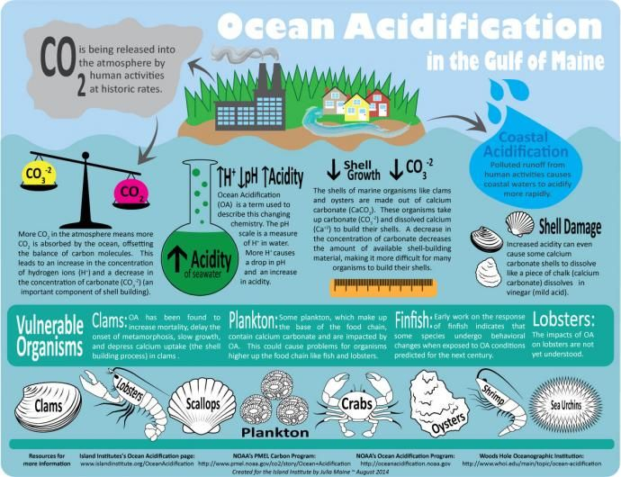 ocean acidification consequences on flora and Object moved to here.