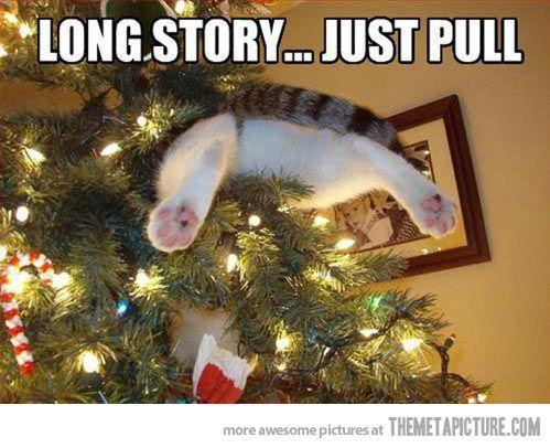 Funny Christmas Meme 2015 : Best christmas ha ha ha s images natal
