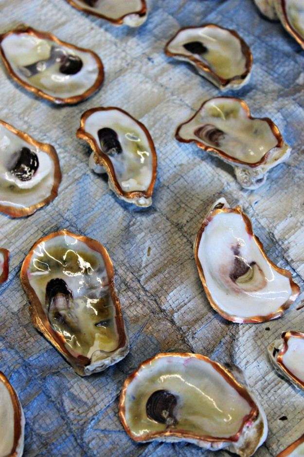 Oyster Shell Project   Oysters & Pearls