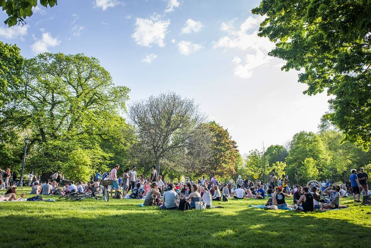 The best parks to have a picnic in Toronto are popular destinations as soon as the weather heats up. While some offer little more than a patch of g...