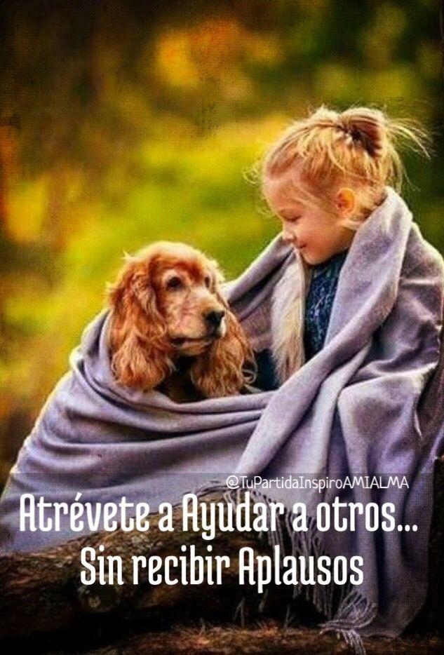 Atrévete A Ayudar A Otros Sin Recibir Aplausos Perros