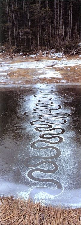 work by Andy Goldsworthy
