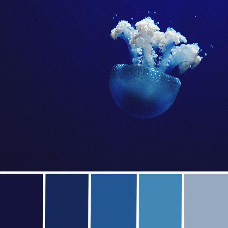 сочетание цветов в картинках синий если