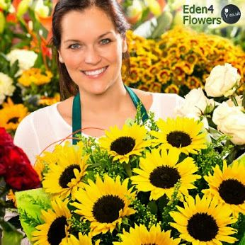 Sunflower Sale now on with up to 50% off selected sunflower bouquets, made to order with freshly cut sunflowers from our own fields, here at Eden4flowers HQ in rural Somerset http://www.eden4flowers.co.uk/content/content_prod_list.numo?idarea=1&idareacat=4&idareacatsub=41