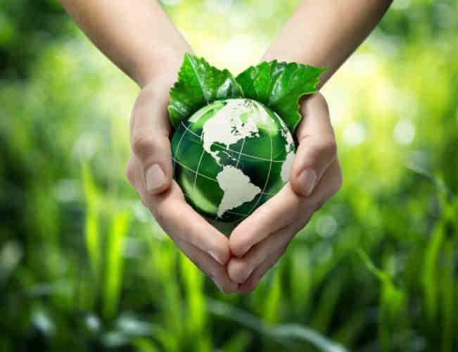 Environmental Science Scholarship