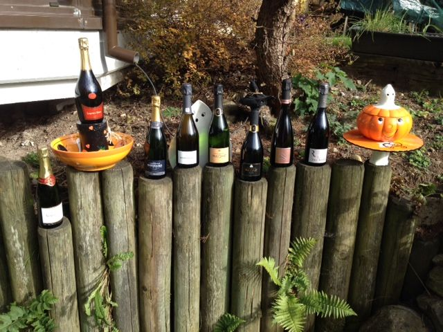 Halloween in the garden - best grower Producers champagne www.the-champagne.ch