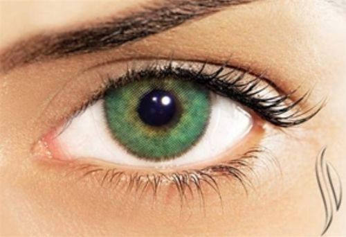 The product SOLOTICA NATURAL COLORS ESMERALDA (EMERALD) is sold by Solotica USA | Color Contact Lenses | Ship from USA | FREE Worldwide Shpping in our Tictail s Tictail lets you create a beautiful online store for free - tictail.com