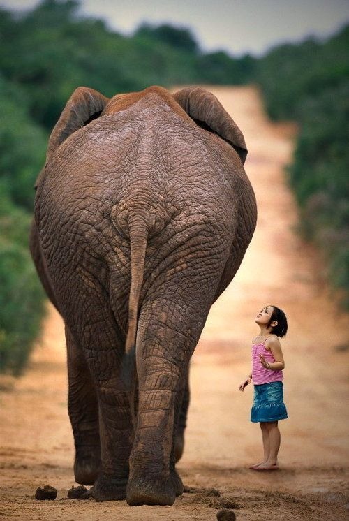 Young girl & elephant - Abu Camp, Botswana
