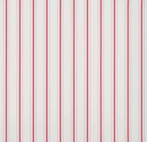 Pin Stripe / lavmi