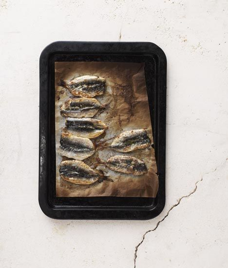 25 best ideas about mercury in fish on pinterest fresh for Mercury in fish chart