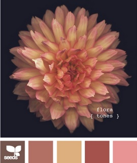 Colors for your house for Fall?  this site has many color combinations