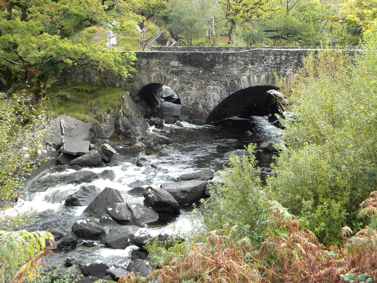 Old bridge, Ireland