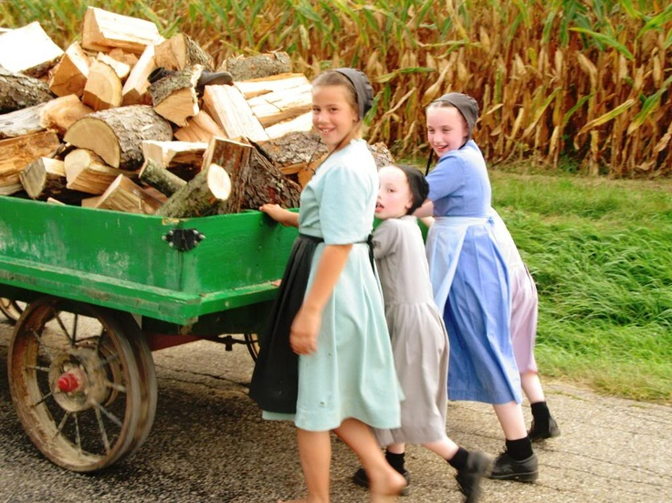 Living the Amish way......