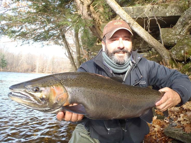 16 best salmon river new york images on pinterest salmon for Salmon fishing new york