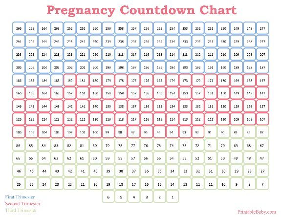 Selective image inside printable pregnancy calender
