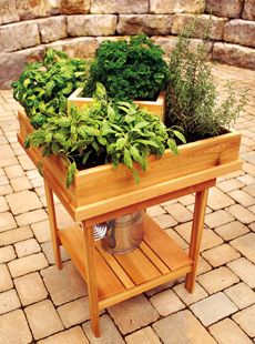 Another cool Herb Garden Idea