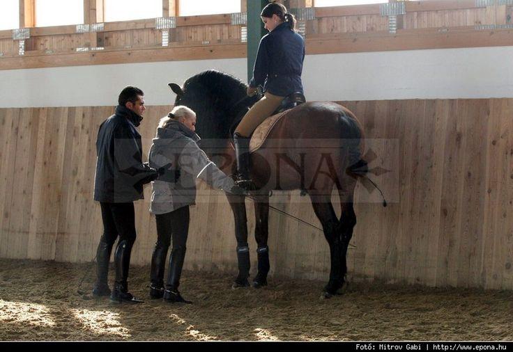 Tanulja meg nálunk mi is az igazi lovaglás!  http://www.epona.hu