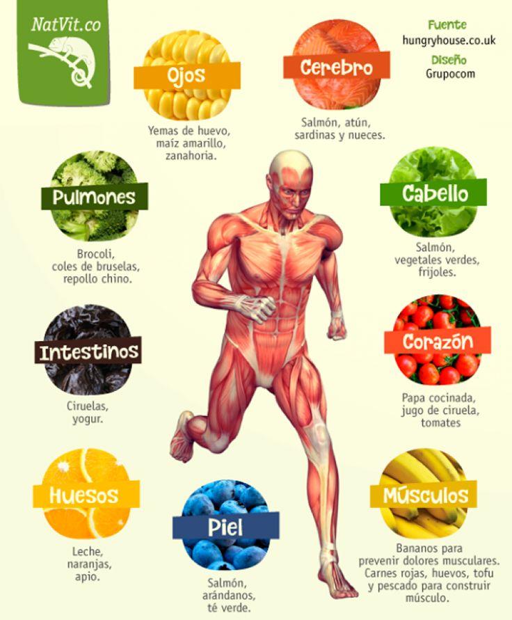 Come balanceado y disfruta de los beneficios de todos los alimentos