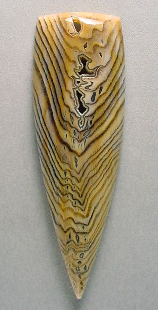 Collectors Hells Canyon Petrified Wood cabochon Silverhawk's designer gemstones.